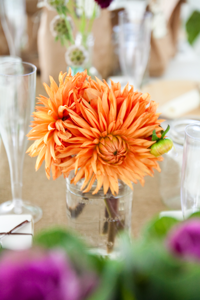 Splendid Stems Wedding Flowers - Turnquist Photography